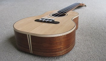 Blackwood ukulele 2